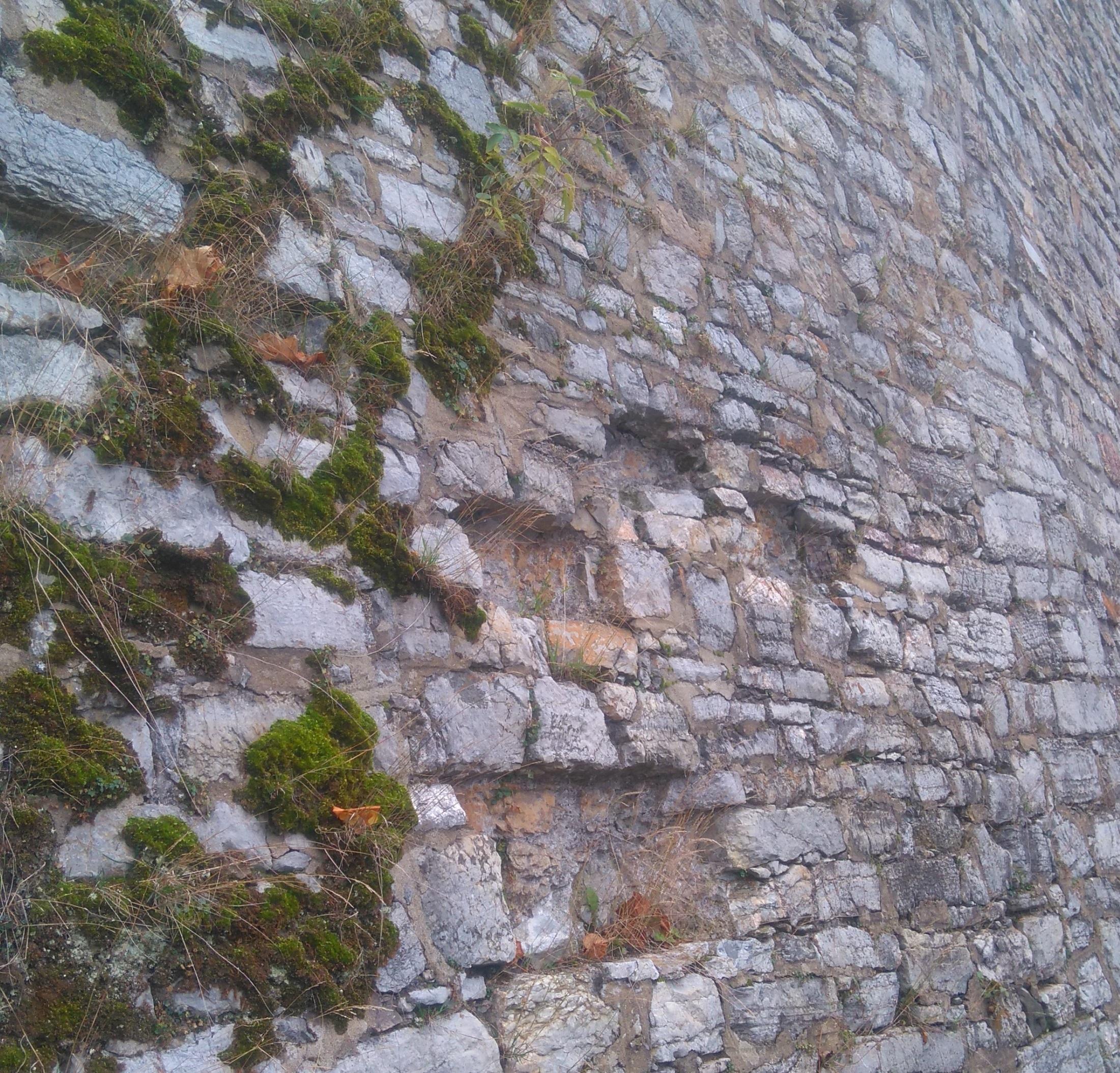 Abgebildet ist eine Natursteinmauer, auf der sich Moos festgesetzt hat. Einige Steine fehlen.